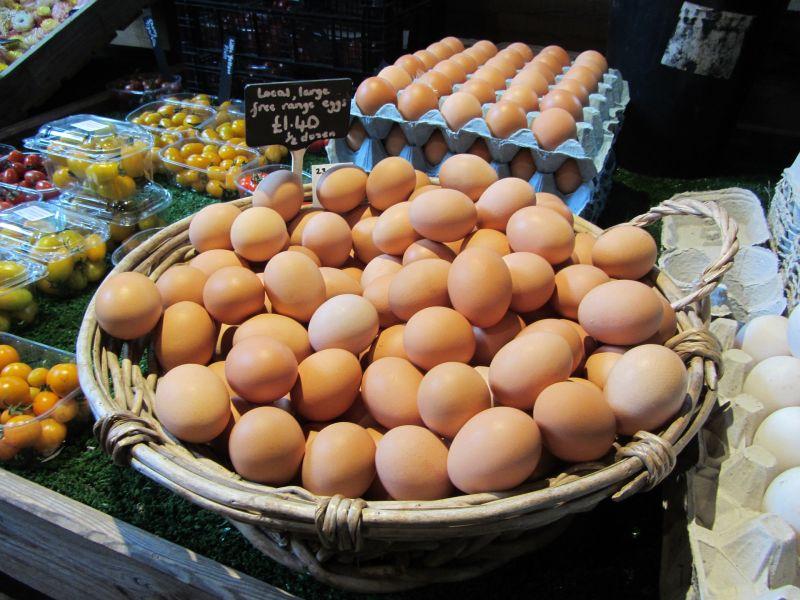 Domáce vajcia ako súčasť zdravej stravy