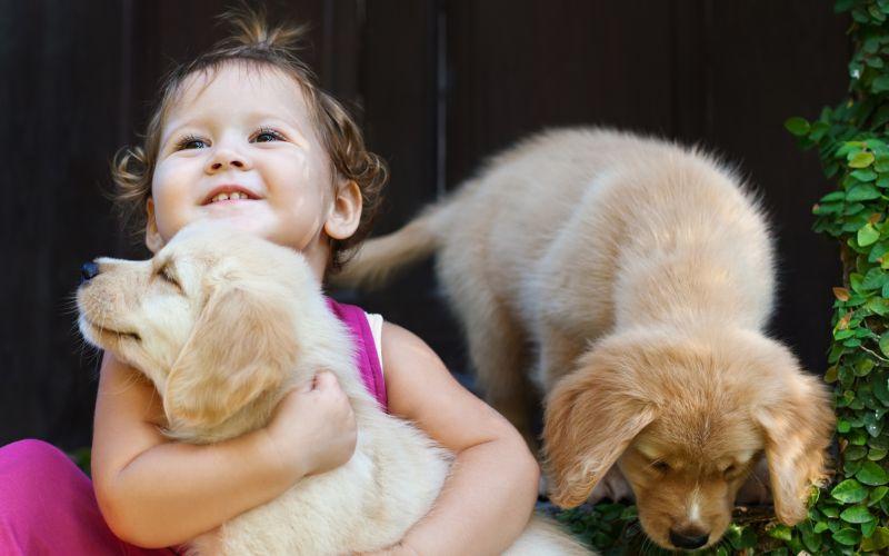Dieťa objíma psa