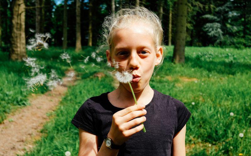 Dievčatko s púpavou v lese