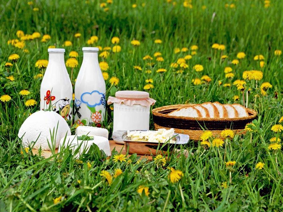 Výroba produktov z kravského mlieka